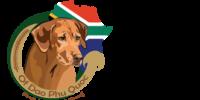 OF DAO PHU QUOC – Rhodesian Ridgeback Zucht Petra Stracke