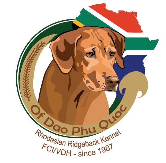 Of Dao Phu Quoc Rhodesian Ridgeback Zucht